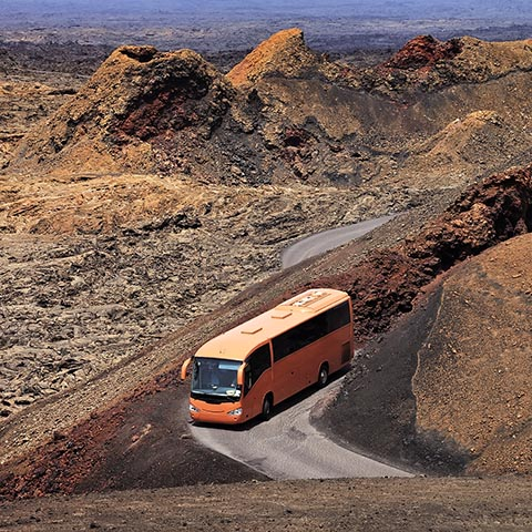 Туристический автобус в Национальном парке Тиманфайя
